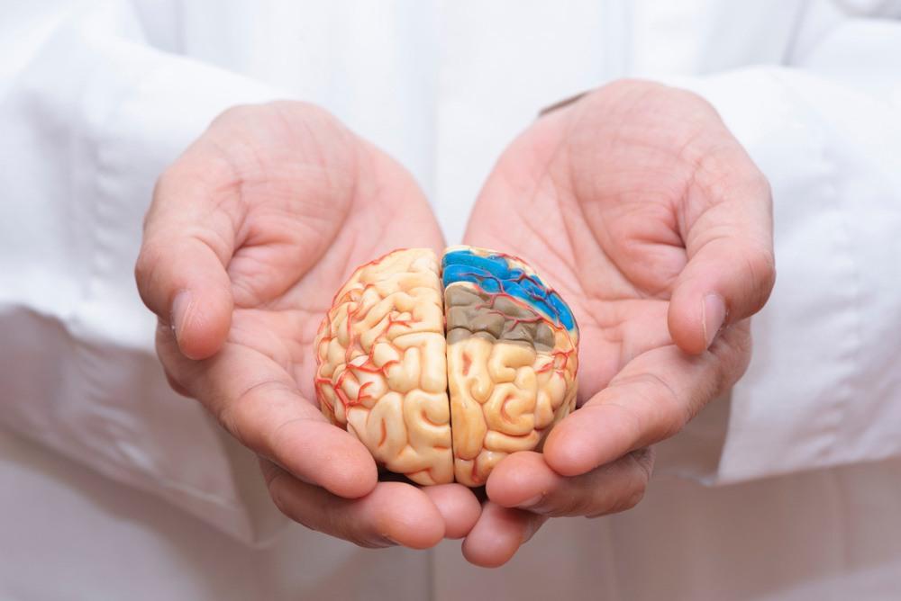 เส้นเลือด ใน สมอง ตีบ